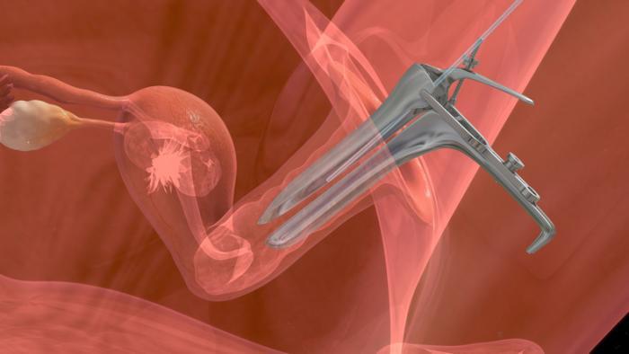 embryo-transfer-procedure